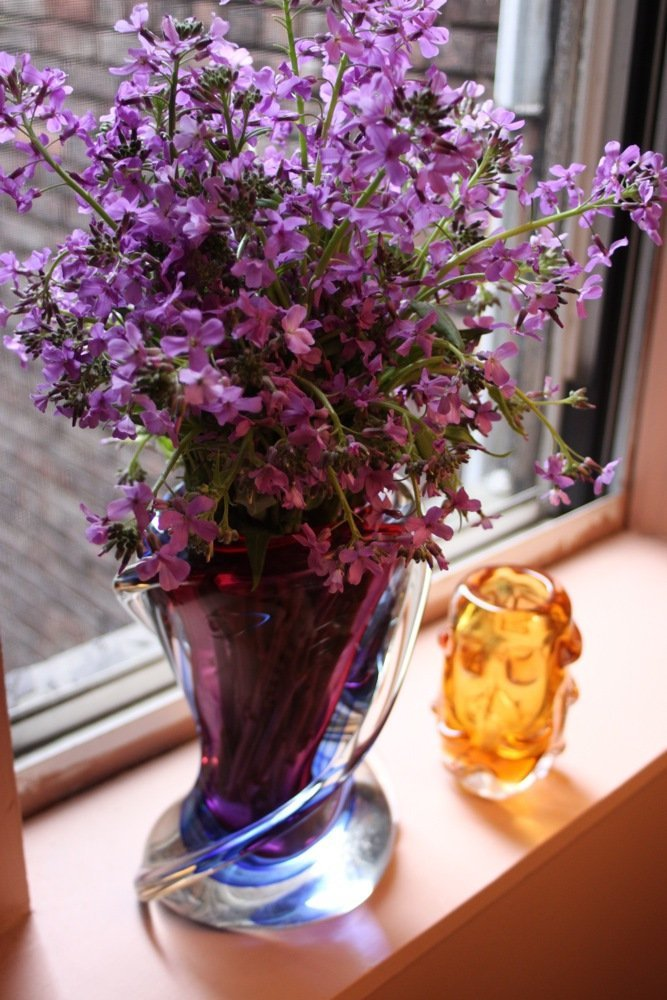 purple phlox in purple vase with gold accent vase apt therapy